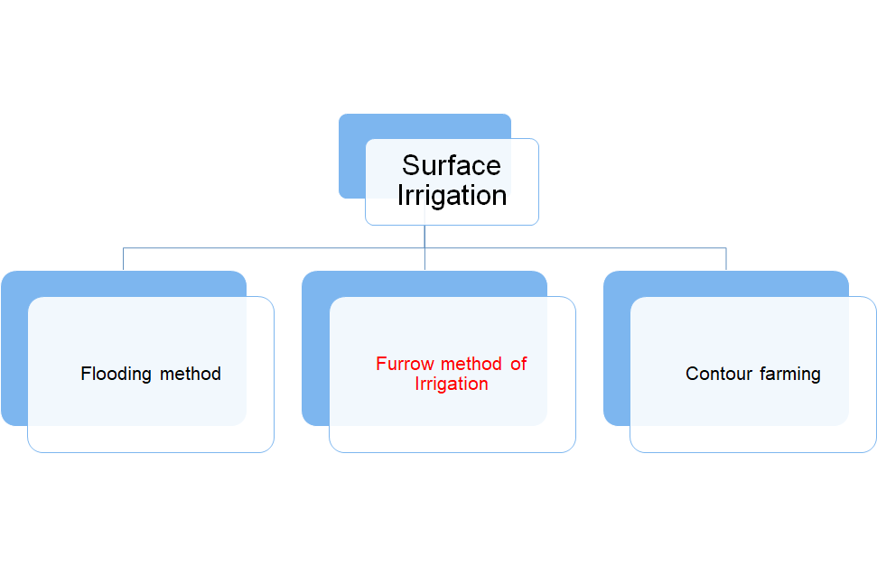 Furrow Method of Irrigation- One of the Types of Surface Irrigation